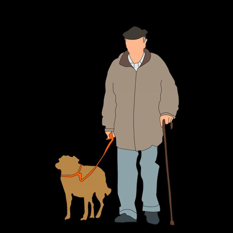 היתרונות של חברת בעלי חיים עבור מבוגרים