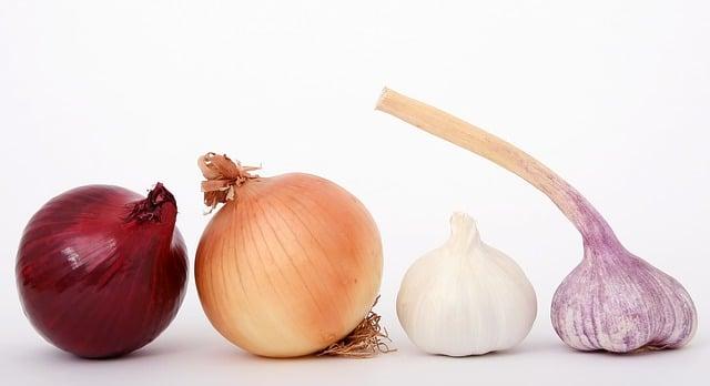 10 מזונות טובים לשמירה על בריאות הכליות ושלפוחית השתן